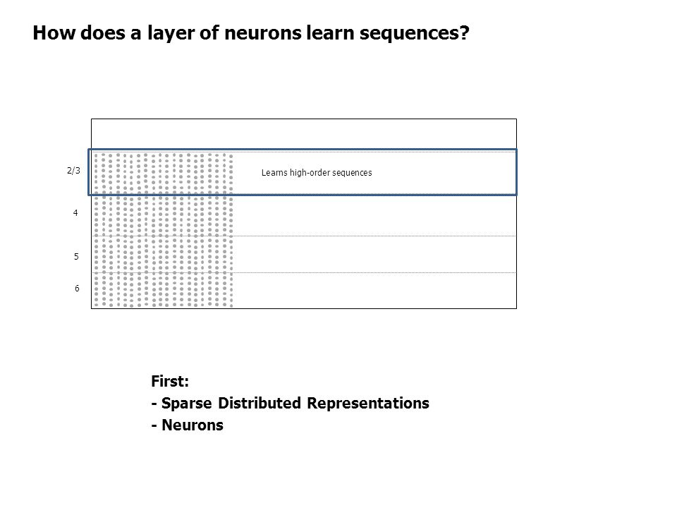 How does a layer of neurons learn sequences