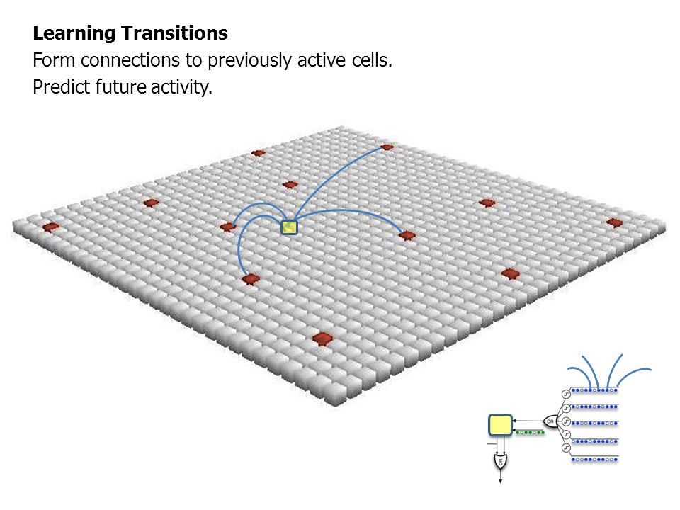 Learning Transitions Form connections to previously active cells. Predict future activity.