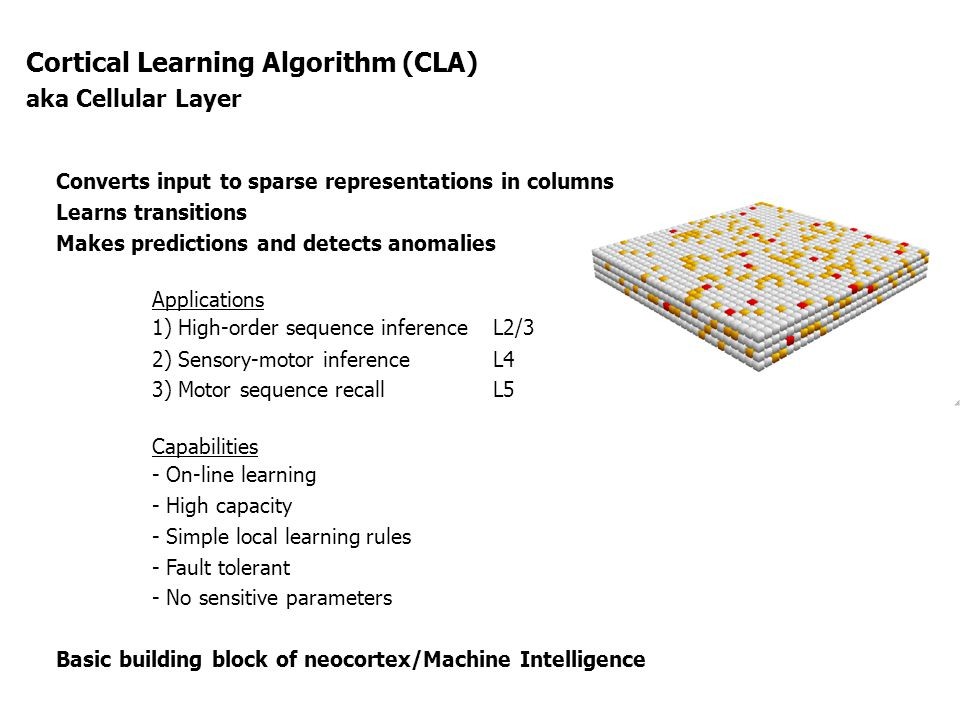 Cortical Learning Algorithm (CLA)