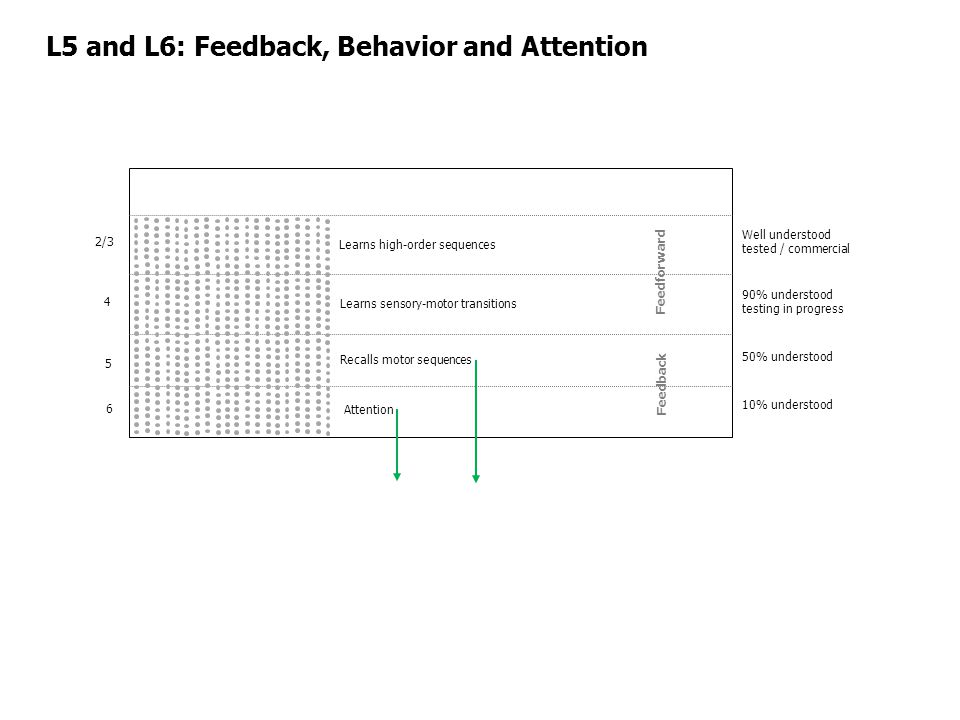 L5 and L6: Feedback, Behavior and Attention