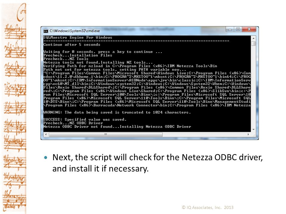 Next, the script will check for the Netezza ODBC driver, and install it if necessary.