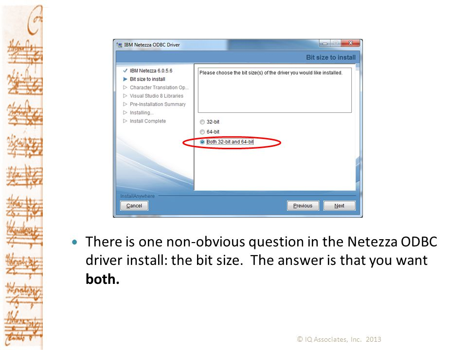 There is one non-obvious question in the Netezza ODBC driver install: the bit size. The answer is that you want both.