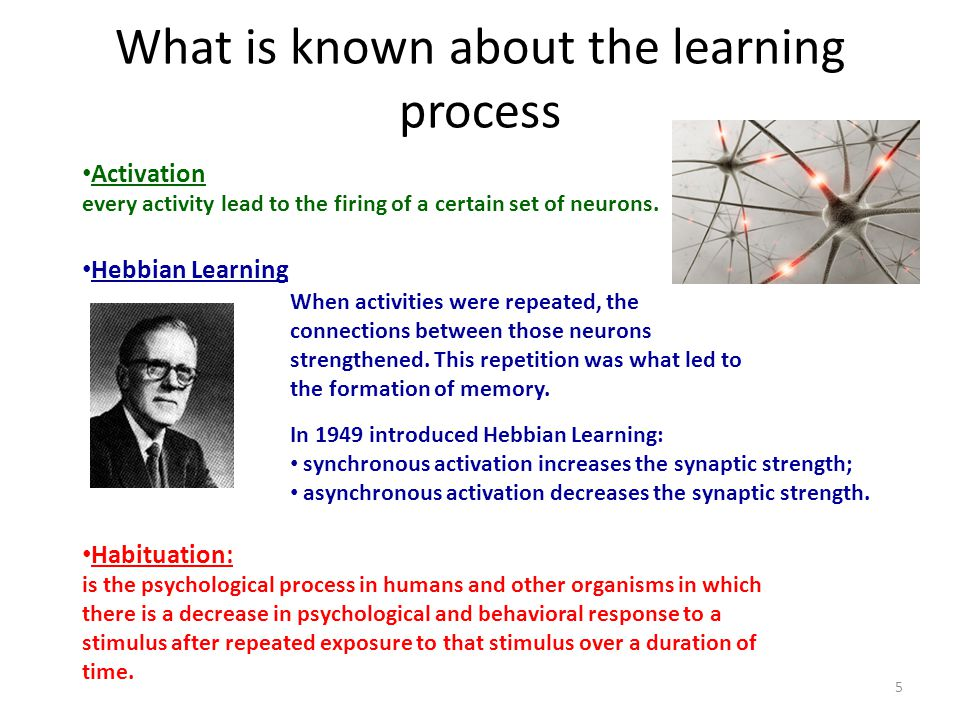 What is known about the learning process