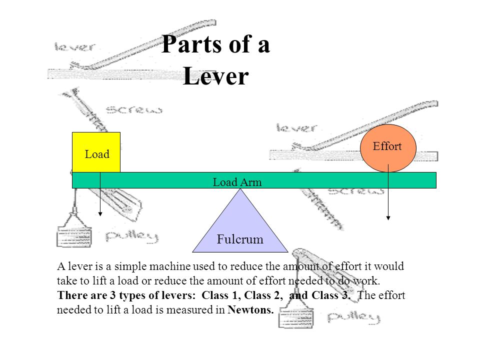 Parts of a Lever Fulcrum Effort Load Load Arm