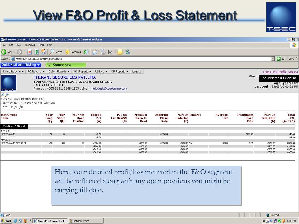 View F&O Profit & Loss Statement
