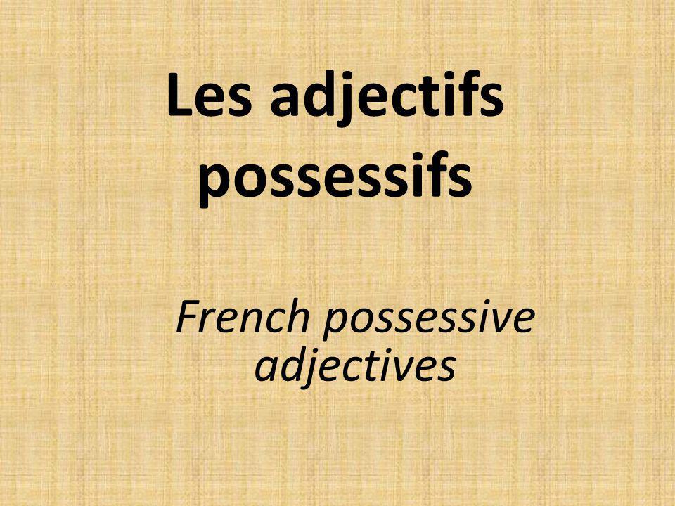 Les adjectifs possessifs
