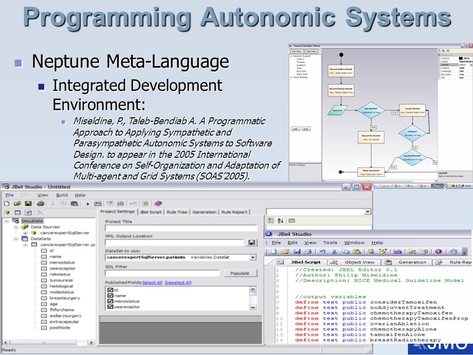 Programming Autonomic Systems