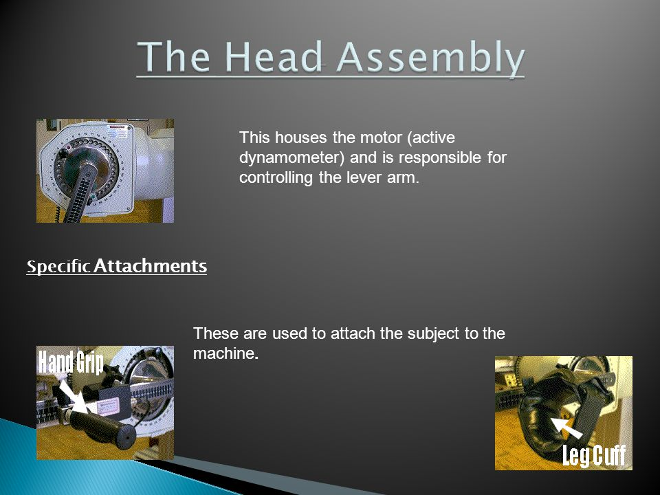 The Head Assembly This houses the motor (active dynamometer) and is responsible for controlling the lever arm.