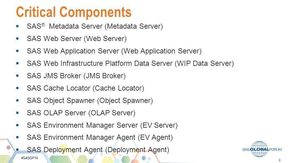 Critical Components SAS® Metadata Server (Metadata Server)