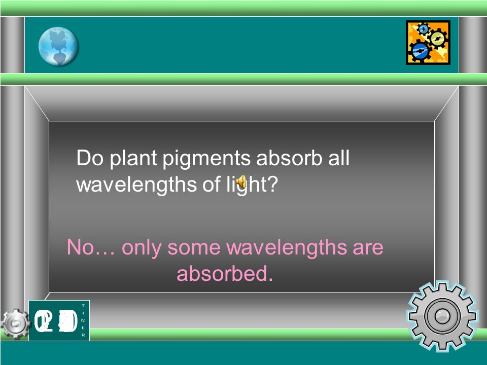 No… only some wavelengths are absorbed.