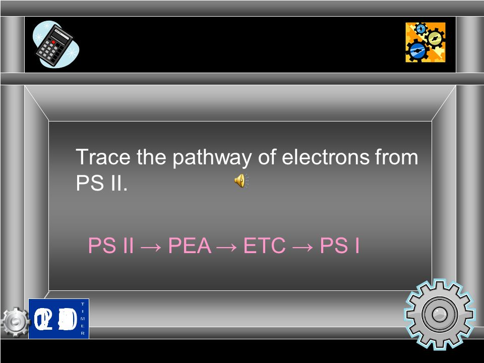 Trace the pathway of electrons from PS II.