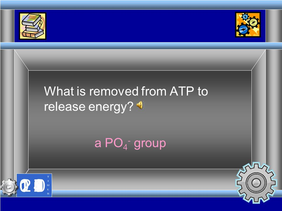 What is removed from ATP to release energy