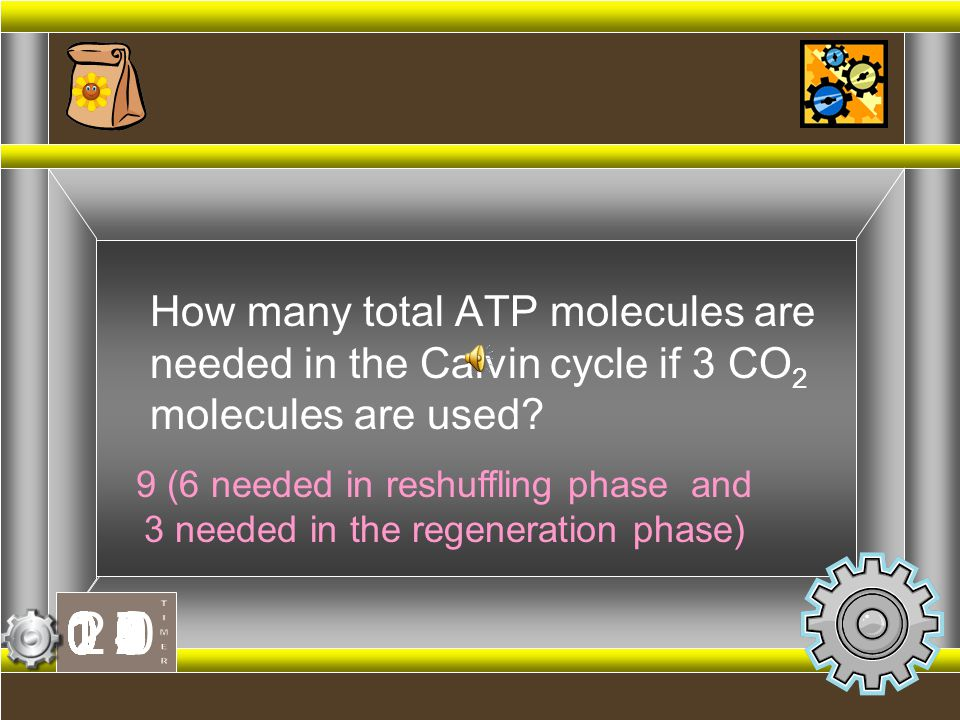 How many total ATP molecules are needed in the Calvin cycle if 3 CO2 molecules are used