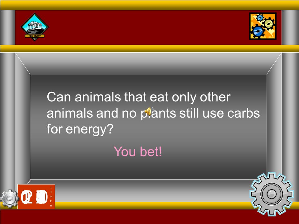 Can animals that eat only other animals and no plants still use carbs for energy