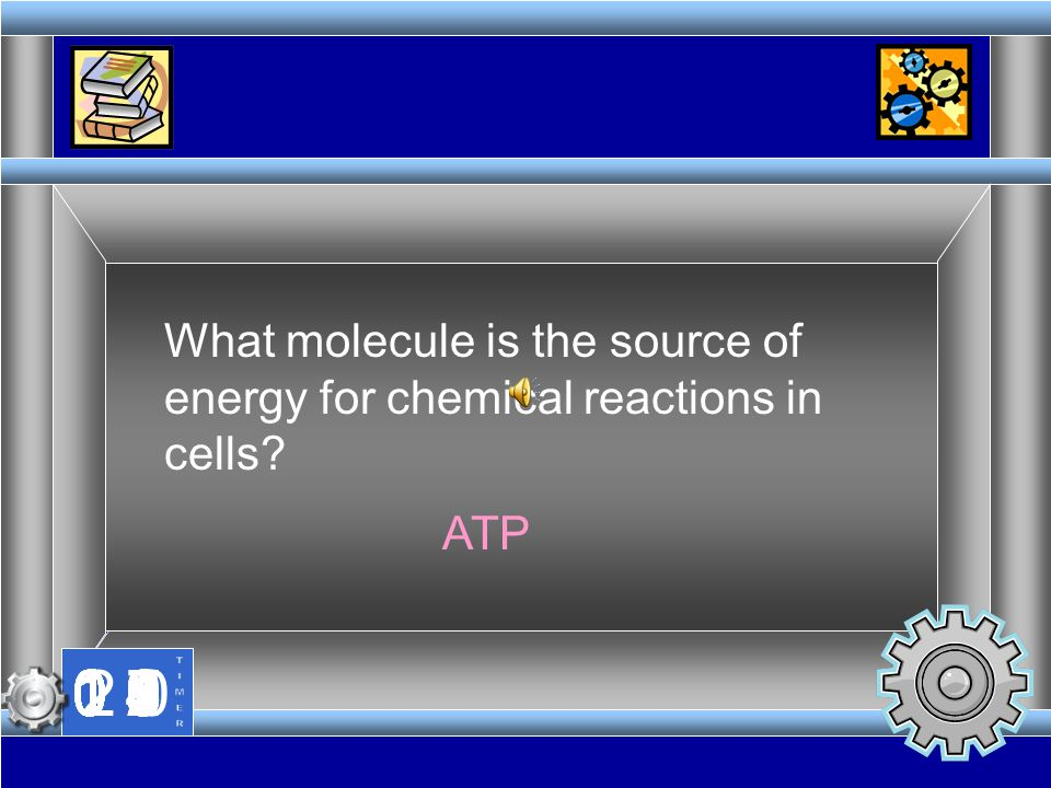 What molecule is the source of energy for chemical reactions in cells