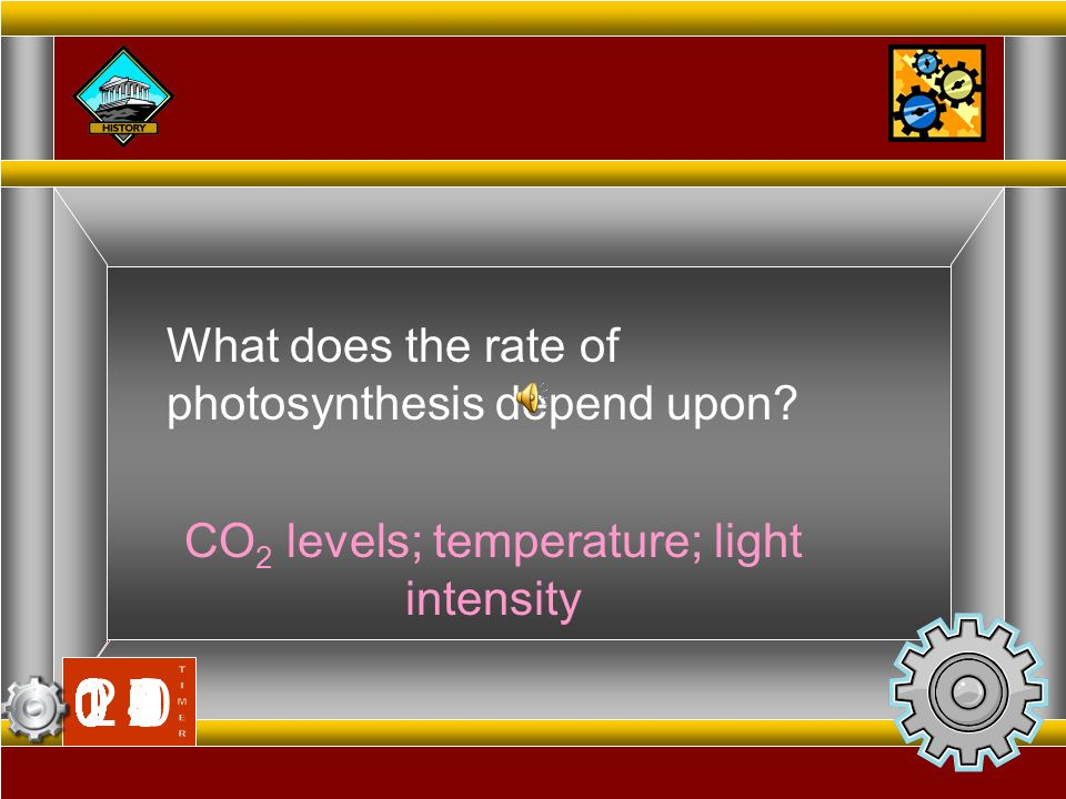 CO2 levels; temperature; light intensity