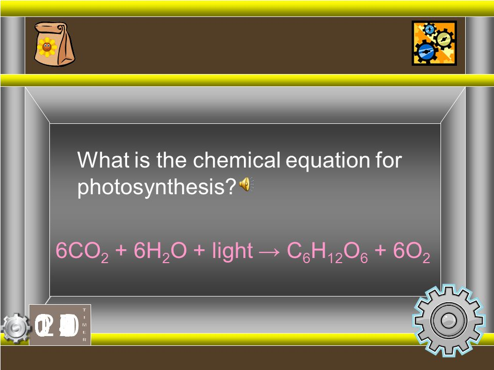 What is the chemical equation for photosynthesis