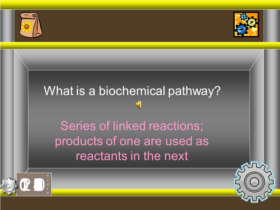 What is a biochemical pathway