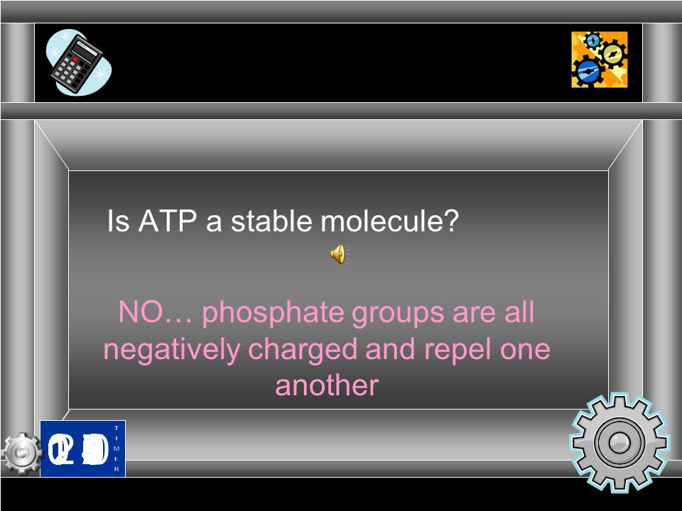 NO… phosphate groups are all negatively charged and repel one another