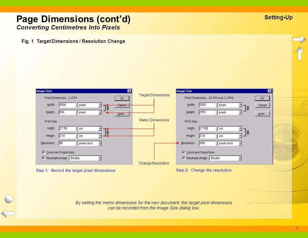 Page Dimensions (cont'd)