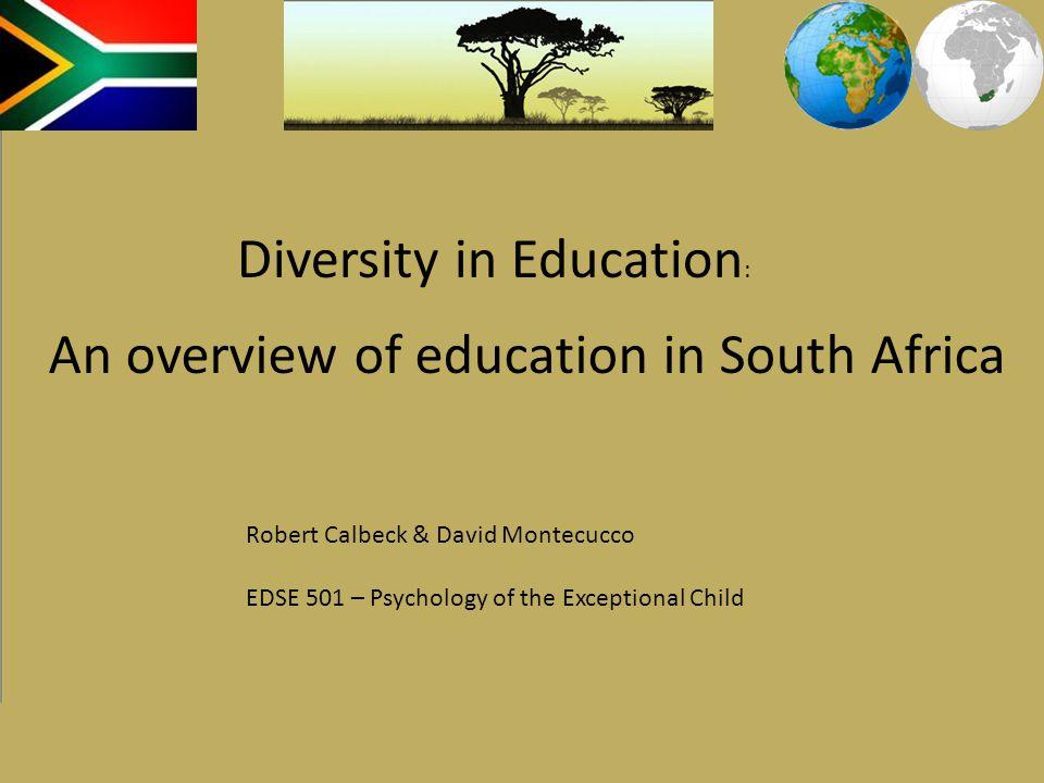 Diversity in Education: