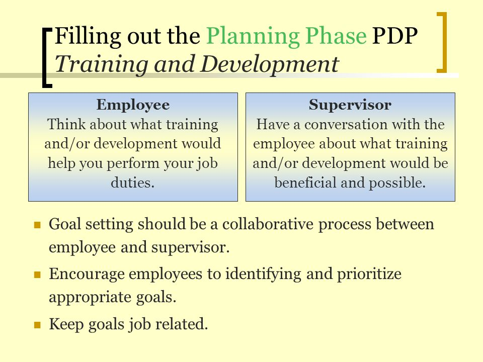 Filling out the Planning Phase PDP Training and Development