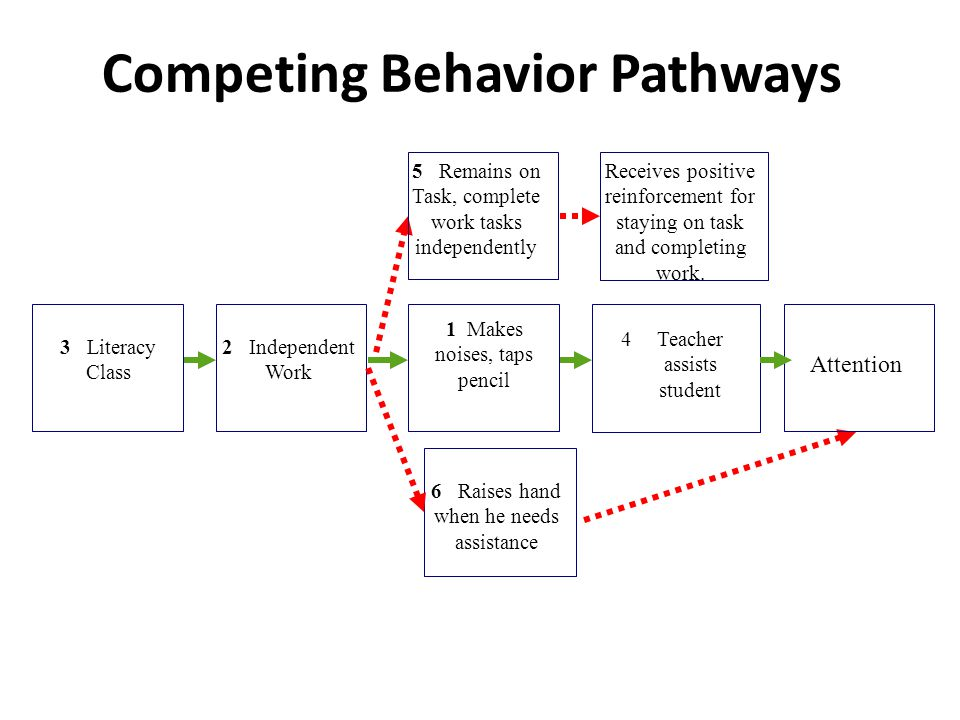 Competing Behavior Pathways