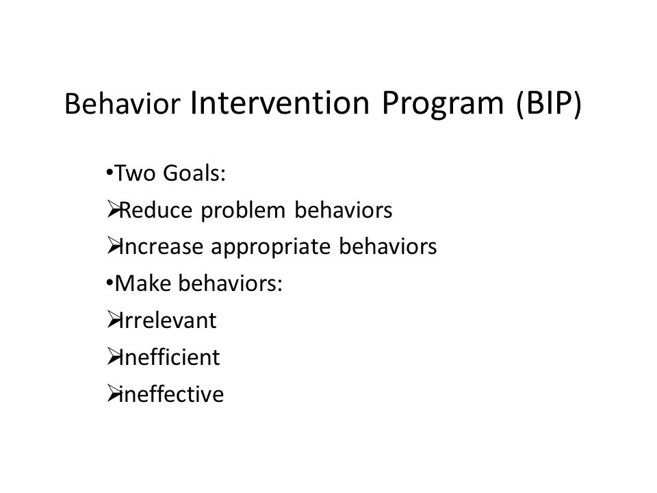Behavior Intervention Program (BIP)