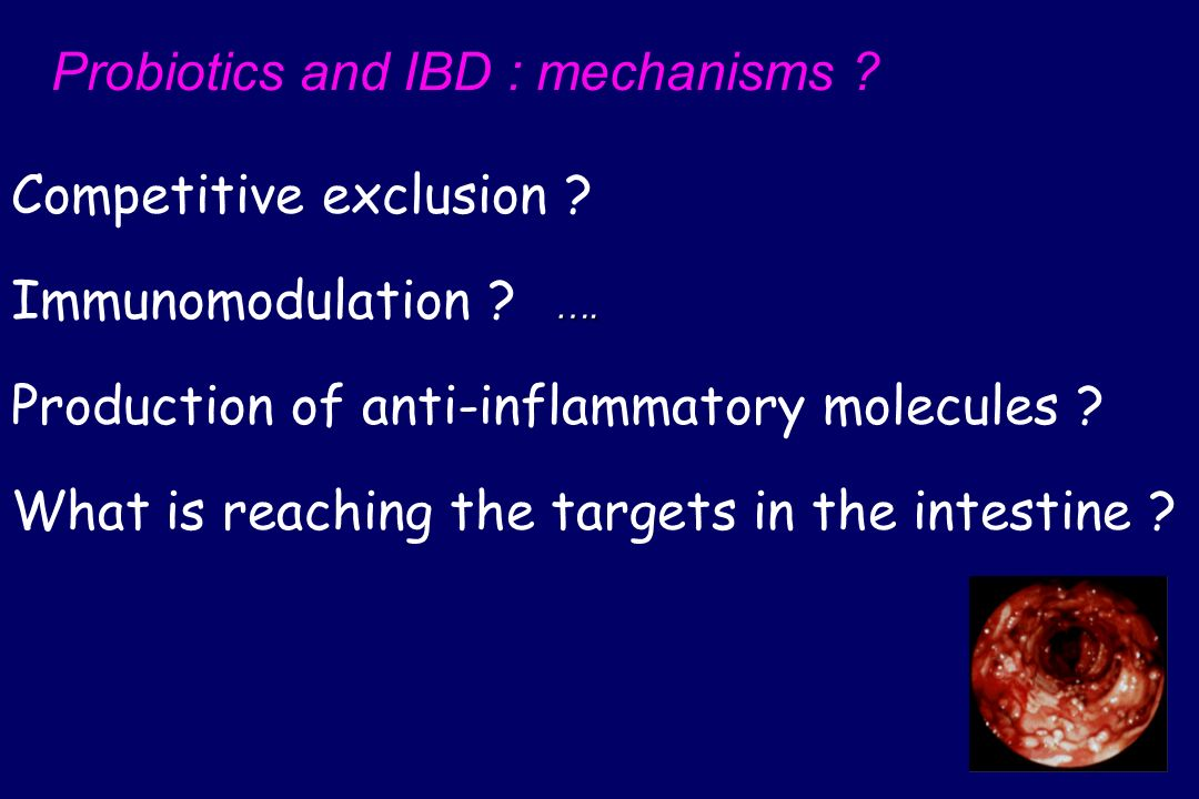 Probiotics and IBD : mechanisms