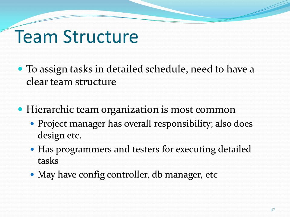 Team Structure To assign tasks in detailed schedule, need to have a clear team structure. Hierarchic team organization is most common.