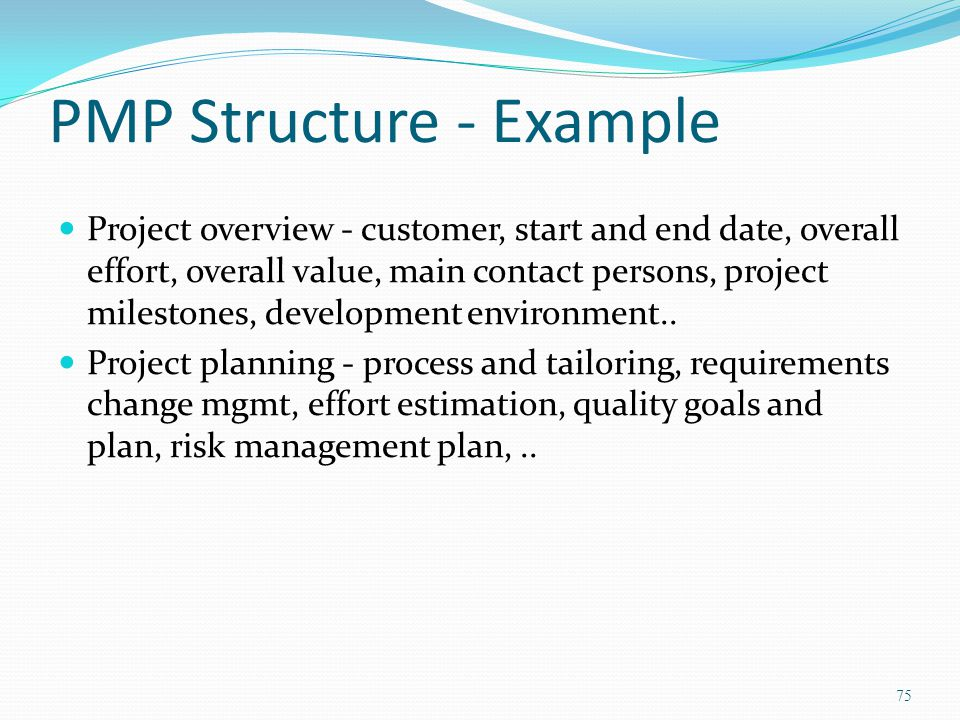 PMP Structure - Example