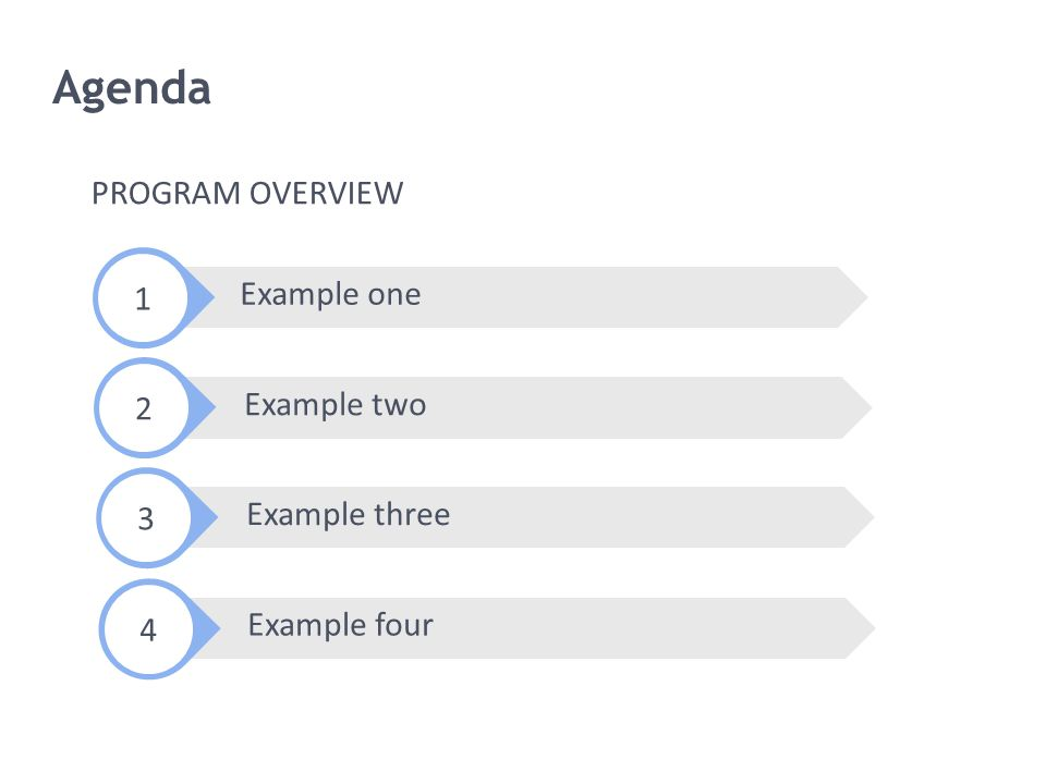 Agenda PROGRAM OVERVIEW 1 Example one 2 Example two 3 Example three 4