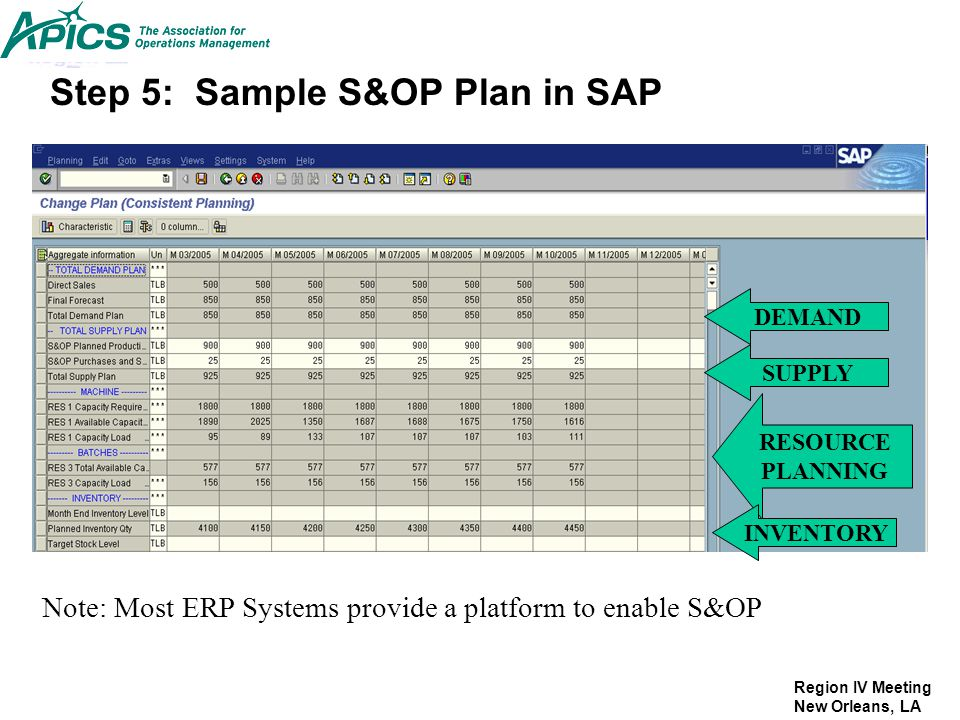 Step 5: Sample S&OP Plan in SAP
