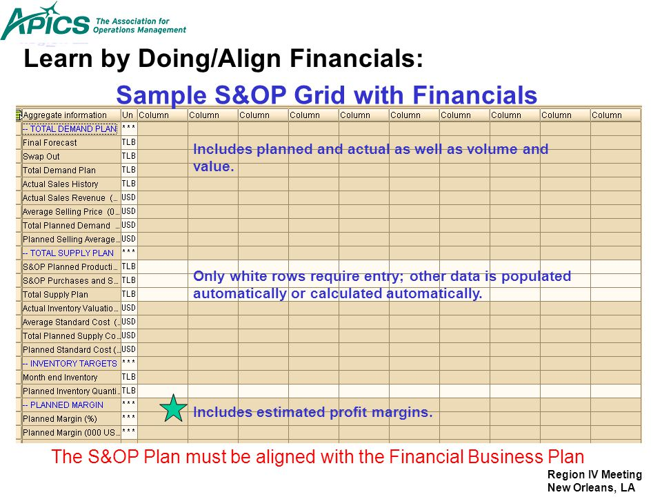 Sample S&OP Grid with Financials