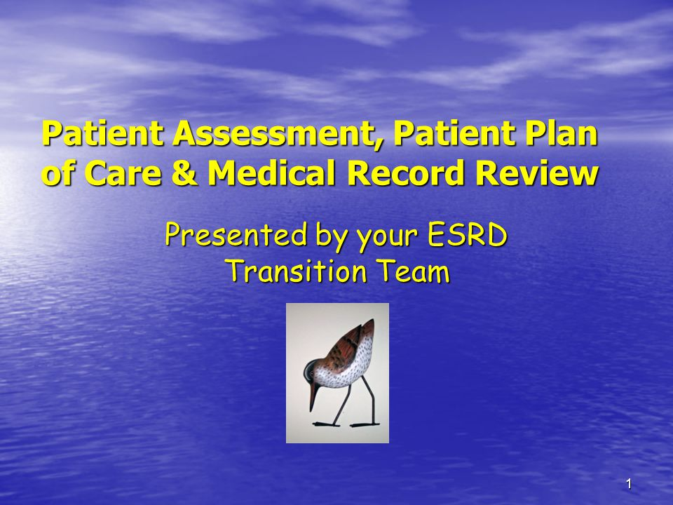 Patient Assessment, Patient Plan of Care & Medical Record Review
