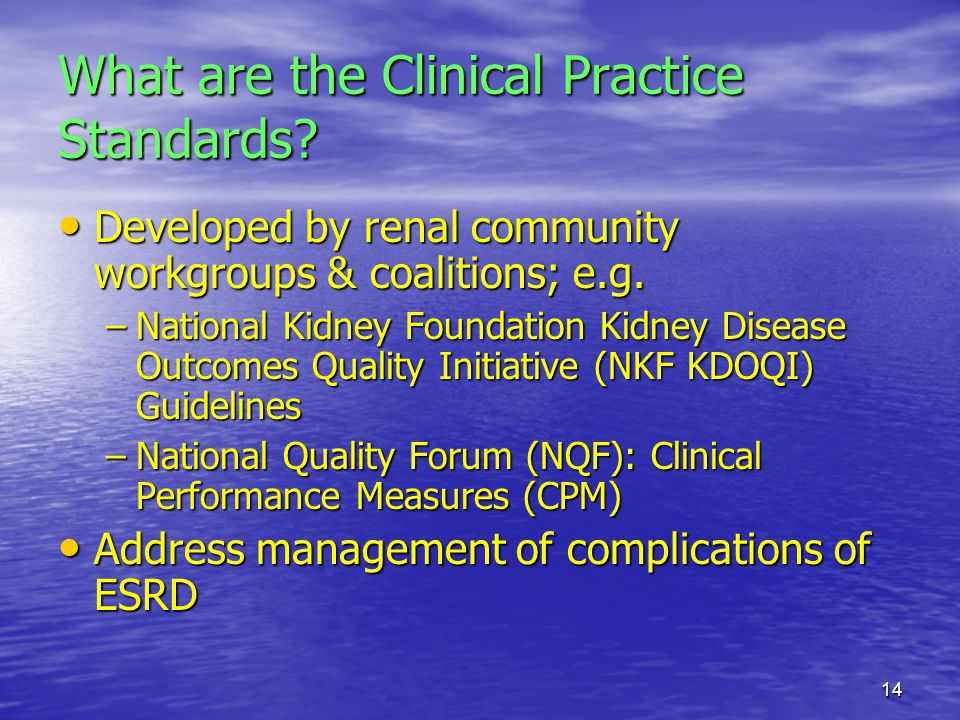 What are the Clinical Practice Standards