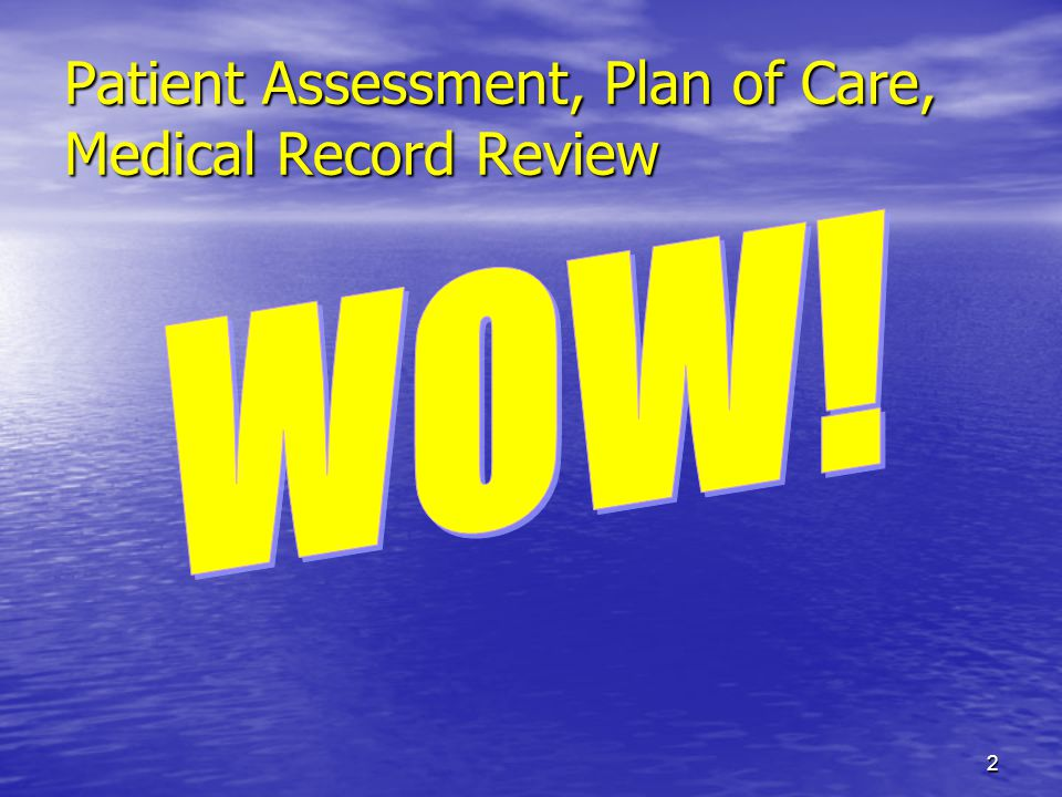Patient Assessment, Plan of Care, Medical Record Review