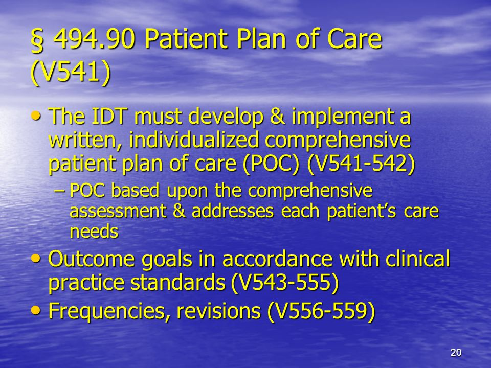 § 494.90 Patient Plan of Care (V541)