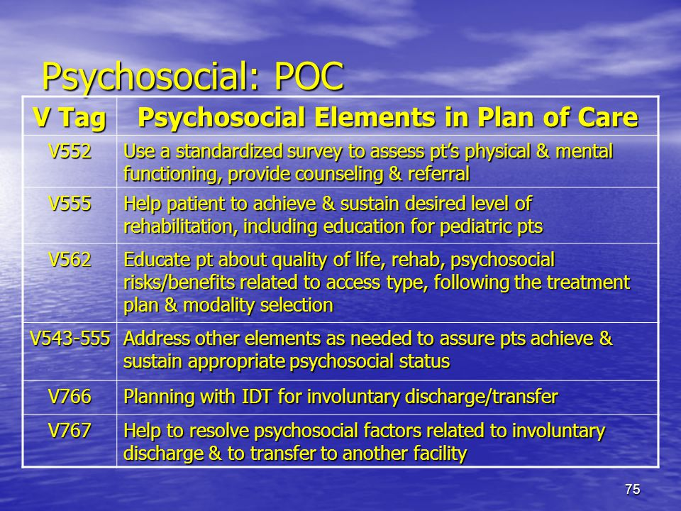 Psychosocial Elements in Plan of Care