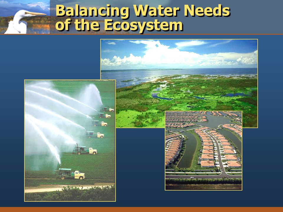 Balancing Water Needs of the Ecosystem