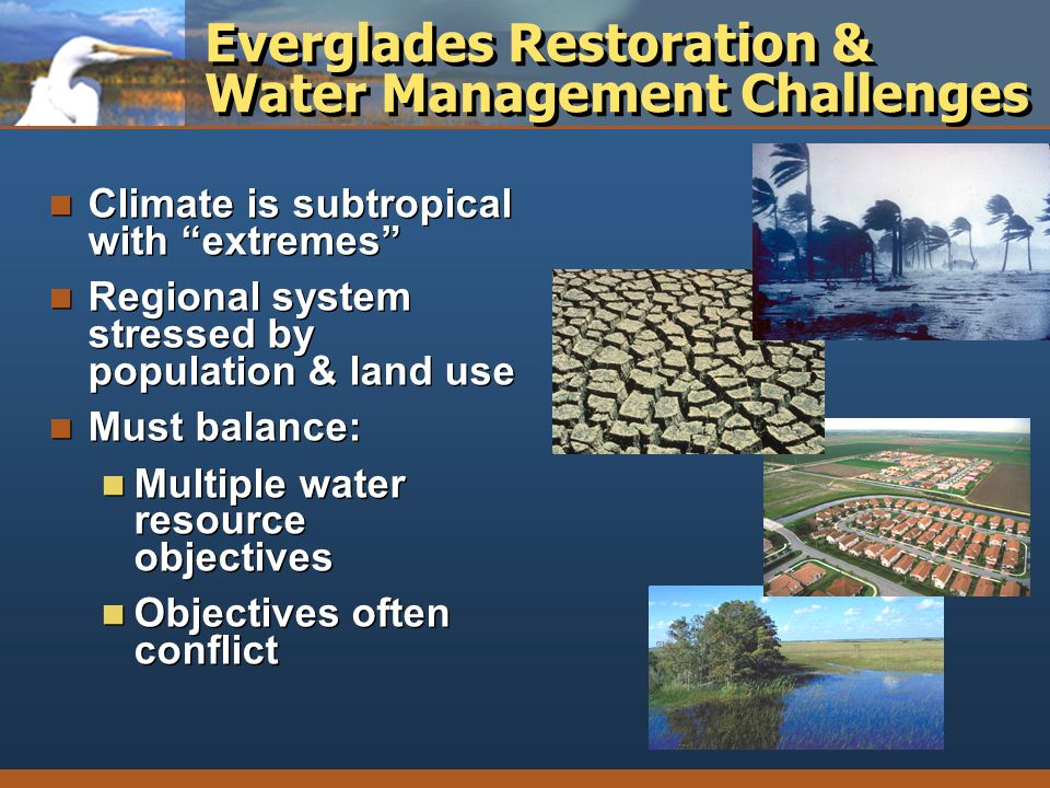 Everglades Restoration & Water Management Challenges