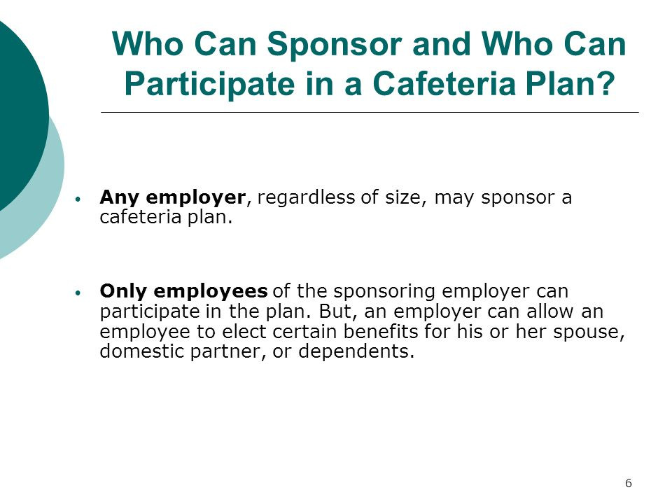 Who Can Sponsor and Who Can Participate in a Cafeteria Plan