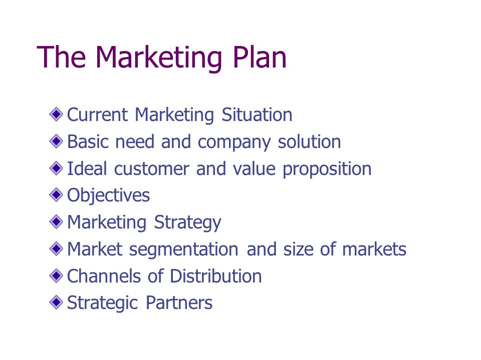 The Marketing Plan Current Marketing Situation