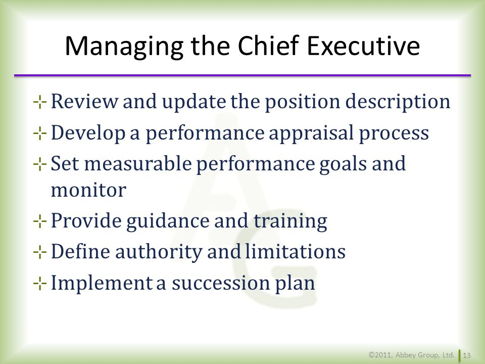Managing the Chief Executive