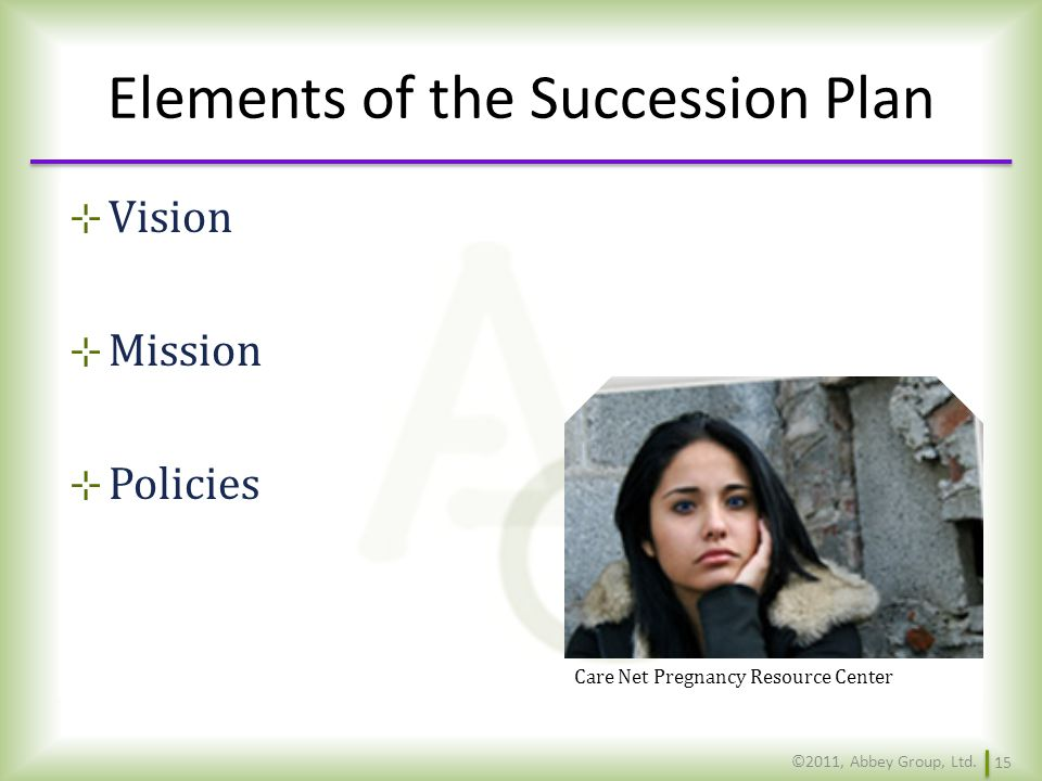 Elements of the Succession Plan