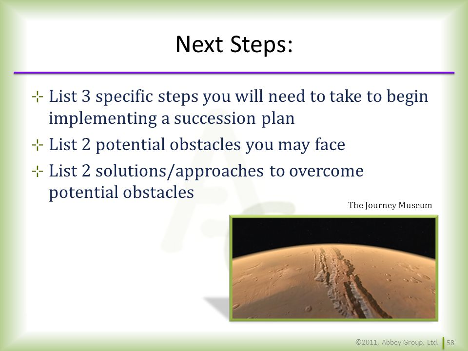 Next Steps: List 3 specific steps you will need to take to begin implementing a succession plan. List 2 potential obstacles you may face.