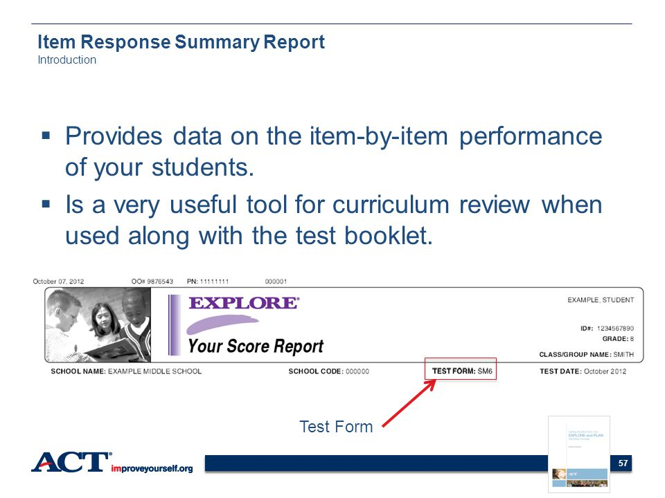 Item Response Summary Report Introduction