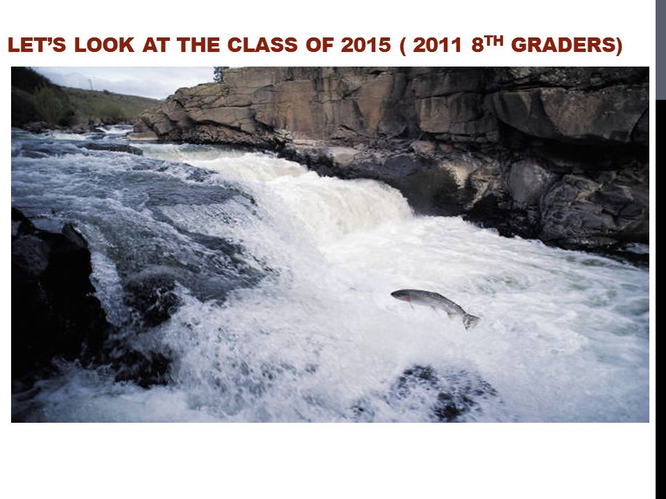 Let's look at the class of 2015 ( 2011 8th graders)