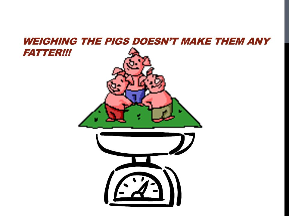 Weighing the pigs doesn't make them any fatter!!!