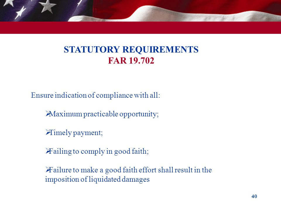 STATUTORY REQUIREMENTS FAR 19.702